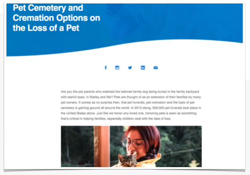 Mourning the Loss of a Pet with a Pet Funeral