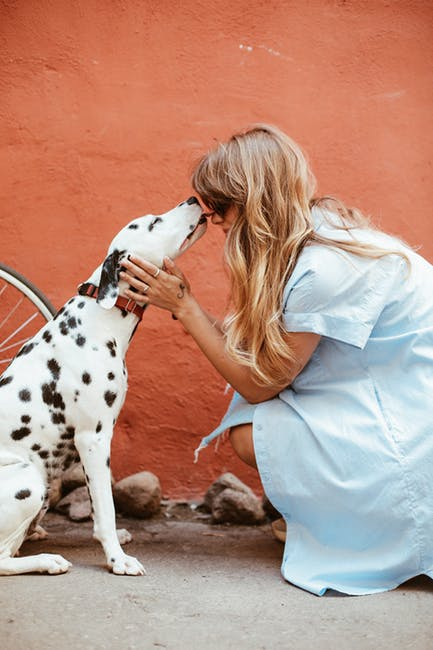 How Pets Can Help You Grieve Pet Giving Owner Kisses